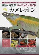 カメレオン 飼育+繁殖+種類解説+現地情報+Q&A etc… (爬虫・両生類パーフェクトガイド)