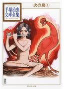 火の鳥 3 (手塚治虫文庫全集)
