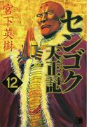 センゴク天正記 12 (ヤンマガKC)