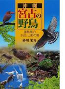 沖縄宮古の野鳥 亜熱帯の水辺、山野の鳥