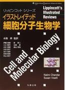 イラストレイテッド細胞分子生物学 (リッピンコットシリーズ)