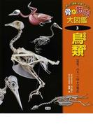 骨と筋肉大図鑑 「体」と「運動」を調べよう! 3 鳥類