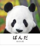 ぱんだ 上野のぱんだ、和歌山のぱんだ、中国のぱんだ