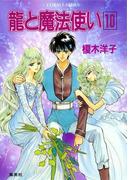 龍と魔法使い 10(コバルト文庫)
