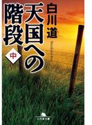 天国への階段(中)(幻冬舎文庫)