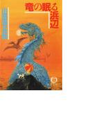 竜の眠る浜辺(徳間文庫)