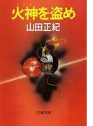 火神(アグニ)を盗め(文春文庫)
