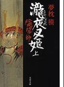 陰陽師 瀧夜叉姫(上)(文春文庫)