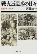 戦火と混迷の日々  悲劇のインドシナ(文春文庫)