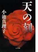 天の刻(とき)(文春文庫)