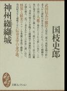 神州纐纈城(大衆文学館)