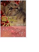 福ねこフォト~プニプニ猫にゃんクリスマスの巻