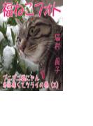 福ねこフォト~プニプニ猫にゃん冬は寒くてツライの巻(2)