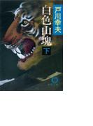 白色山塊(下)(徳間文庫)