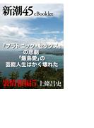 『プラトニック・セックス』の悲劇 「飯島愛」の芸能人生はかく壊れた―新潮45eBooklet 裏情報編5(新潮45eBooklet)