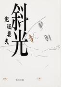 【期間限定価格】斜光(角川文庫)