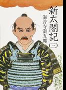 新太閤記(三)(角川文庫)