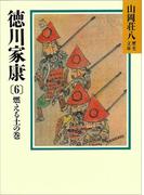 徳川家康(6) 燃える土の巻(山岡荘八歴史文庫)
