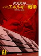 小説エネルギー戦争(光文社文庫)