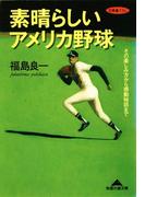 素晴らしいアメリカ野球~その楽しみ方から感動秘話まで~(知恵の森文庫)