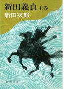 新田義貞(上)