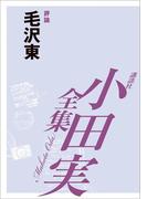 毛沢東 【小田実全集】(小田実全集)