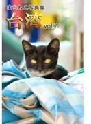 まちねこ写真集・台湾 vol.2(ニャンと猫ねこ)
