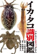 イカ・タコ識別図鑑(釣り人のための遊遊さかなシリーズ)