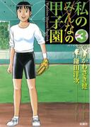 私の甲子園 3(アクションコミックス)