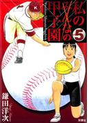 私の甲子園 5(アクションコミックス)