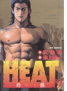 HEAT-灼熱- 9(ビッグコミックス)