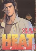 HEAT-灼熱- 13(ビッグコミックス)