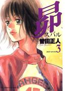 昴 3(ビッグコミックス)
