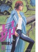 昴 11(ビッグコミックス)