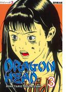 ドラゴンヘッド(3)