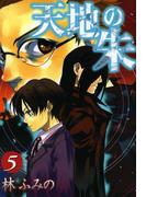 天地の朱 5(ZERO-SUMコミックス)