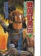 戦国武勇伝 2(歴史群像新書)