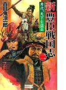 新豊臣戦国志2(歴史群像新書)