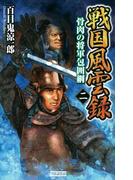 戦国風雲録 二(歴史群像新書)