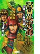 戦国風雲録 三(歴史群像新書)