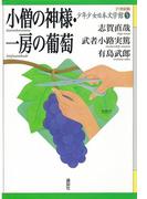 小僧の神様・一房の葡萄(21世紀版少年少女日本文学館)