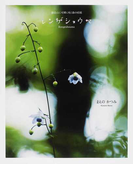 レンゲショウマ 御岳山に可憐に咲く森の妖精