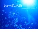 シューボコの海