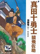 真田十勇士 猿飛佐助(痛快 世界の冒険文学)