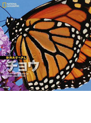 チョウ (ナショナルジオグラフィック動物大せっきん)