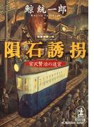 隕石誘拐~宮沢賢治の迷宮~(光文社文庫)