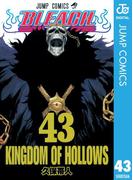 BLEACH モノクロ版 43(ジャンプコミックスDIGITAL)
