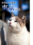 まちねこ写真集・東京 vol.2(ニャンと猫ねこ)