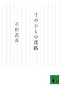 てのひらの迷路(講談社文庫)