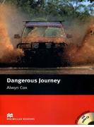 [Level 2: Beginner] Dangerous Journey